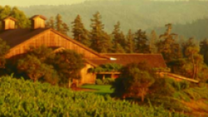 Mendocino Wine Country  Screen Shot 2016-11-03 at 12.34.10 PM_0