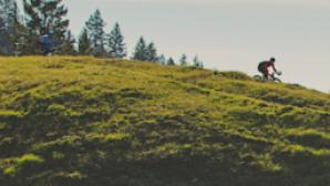 캘리포니아 10문 10답: 레비 라이파이머 (Levi Leipheimer) Screen Shot 2016-11-07 at 10.49.54 AM