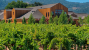 5 Napa Valley Wineries You Should Know Screen Shot 2016-11-09 at 9.00.13 AM