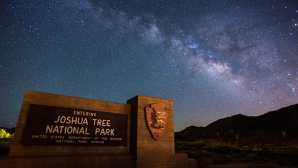 Camping in Joshua Tree Stargazing - Joshua Tree Nationa