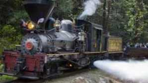 Scoprite tutte le strade che portano a Yosemite SugarPineRailroad_LuxuryResource_11416