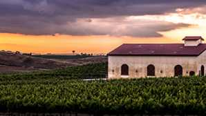 Sposarsi tra i vigneti Temecula Valley Winery Weddings