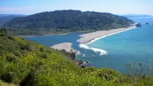新月城 Things To Do - Redwood National