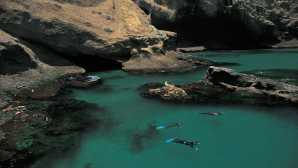 Spotlight: Parc National Des Channel Islands Things To Do: Santa Barbara Isla