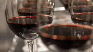 Mount Hermon Top 43 Wines to Buy Now - Sunset
