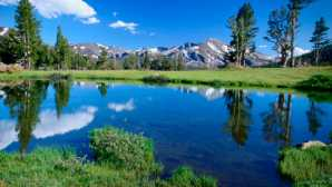 瀑布奇观 Tuolumne Meadows - Yosemite Nati