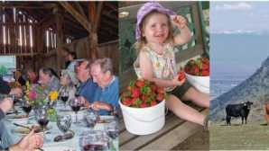 Farm-to-Table Dining Experiences Visit a Farm or Ranch - Californ_0
