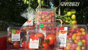 Always In Season: Quince Windset Farms Giveaway   Califor