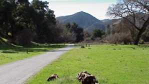 Acampar en Pinnacles campground_2