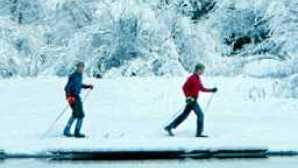 Yosemite Ski and Snowboard Area cross-country-skiing-78393382_hero