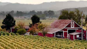 Dry Creek Valley e Sonoma Valley healdsburg_256x180