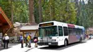 Focus : Sequoia e Kings Canyon National Parks imgres