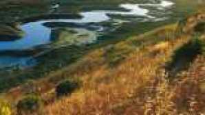 캘리포니아의 놀라운 해안 보존 구역 lupinerubis