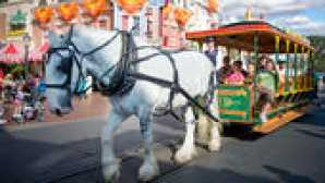 Come spostarsi all'interno del Disneyland Resort main-street-vehicles-02