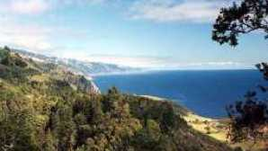 Spotlight: Big Sur nepenthe