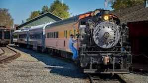 EXCURSION TRAIN RIDES