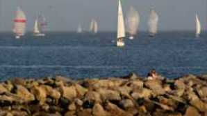 Muelle y zona costera sailboat-races