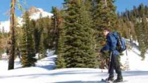 Lassen in Winter snowshoer-mt-diller