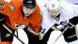 En vedette : Anaheim vca_hondacenter_resource_259x180