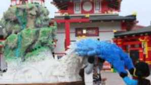 Spotlight: Legoland California vca_legoland_resource_259x180