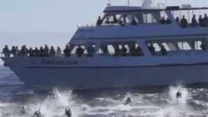 Top Places for Whale Watching in California vca_resource_Princessmontereywhale_256x180