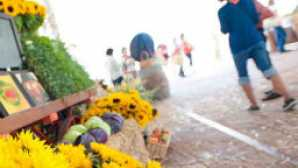 Farmers' Markets em San Luis Obispo vca_resource_SLOActivities_256x180