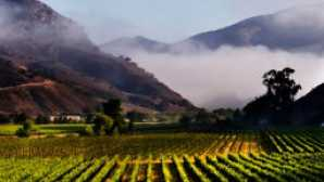 Santa Barbara: Santa Rita Hills Wine Trail vca_resource_aubonclimat_256x180
