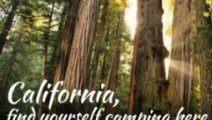 Where to Camp in California