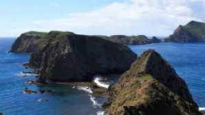 Spotlight: Channel Islands National Park vca_resource_channelislands_256x180_0