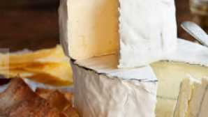 California Artisan Cheese Festival vca_resource_cowgirlcreamery_256x180