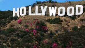 Spotlight: Hollywood vca_resource_discoverlahollywood_256x180