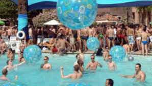 Cactus Plants vca_resource_gaypalmsprings_256x180