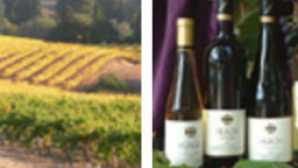 Spotlight: Mendocino vca_resource_huschvineyards_256x180