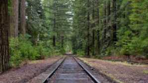 Skunk Train vca_resource_mendocinobucketlist_256x180