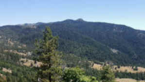 Chacewater Winery & Olive Mill vca_resource_mendocinonationalforest_256x180