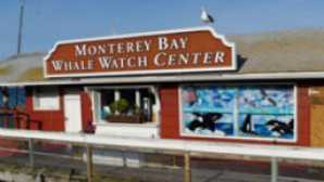 Top Places for Whale Watching in California vca_resource_montereybaywhalewatch_256x180