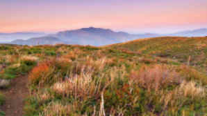 Pacific Crest Trail – Southern California