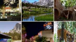 Ski & Board in California vca_resource_playfresno_256x180