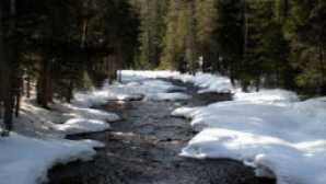 Ski & Board in California vca_resource_sierranationalforest_256x180
