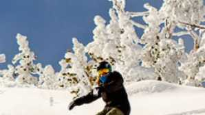 Tahoe City vca_resource_skiheavenly_256x180_0