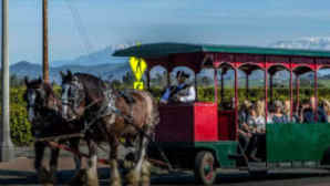 Temecula Valley—Tours & Transportation