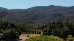 Ventura County Wine Trail vca_resource_topa_256x180