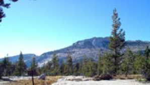 Focus: Yosemite National Park  vogelsang-vm