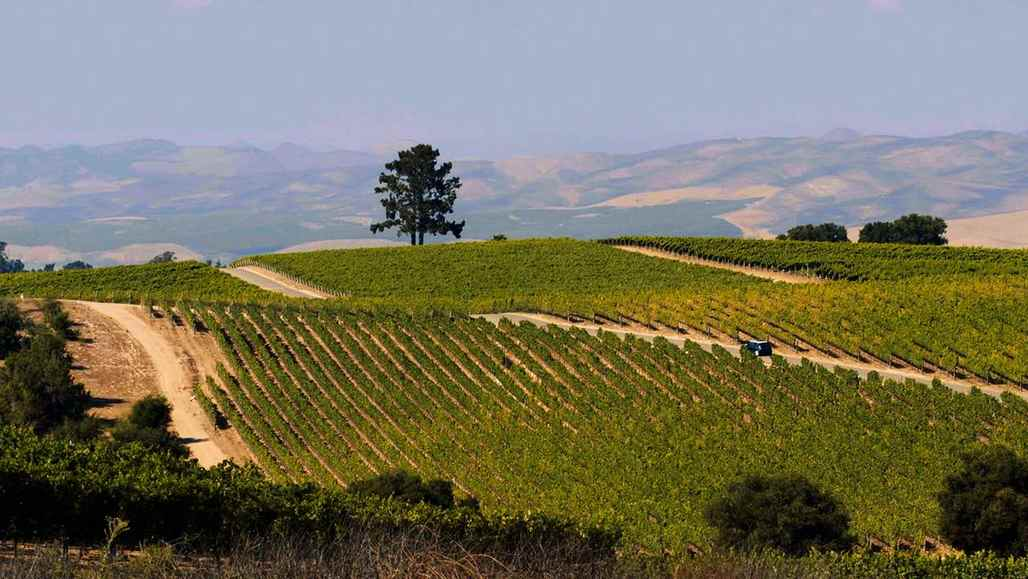 Santa Maria Valley: 5 Amazing Things vc_ca101_videothumbnail_fiveamazingthings_santamaria_presquilewinery_1280x7202