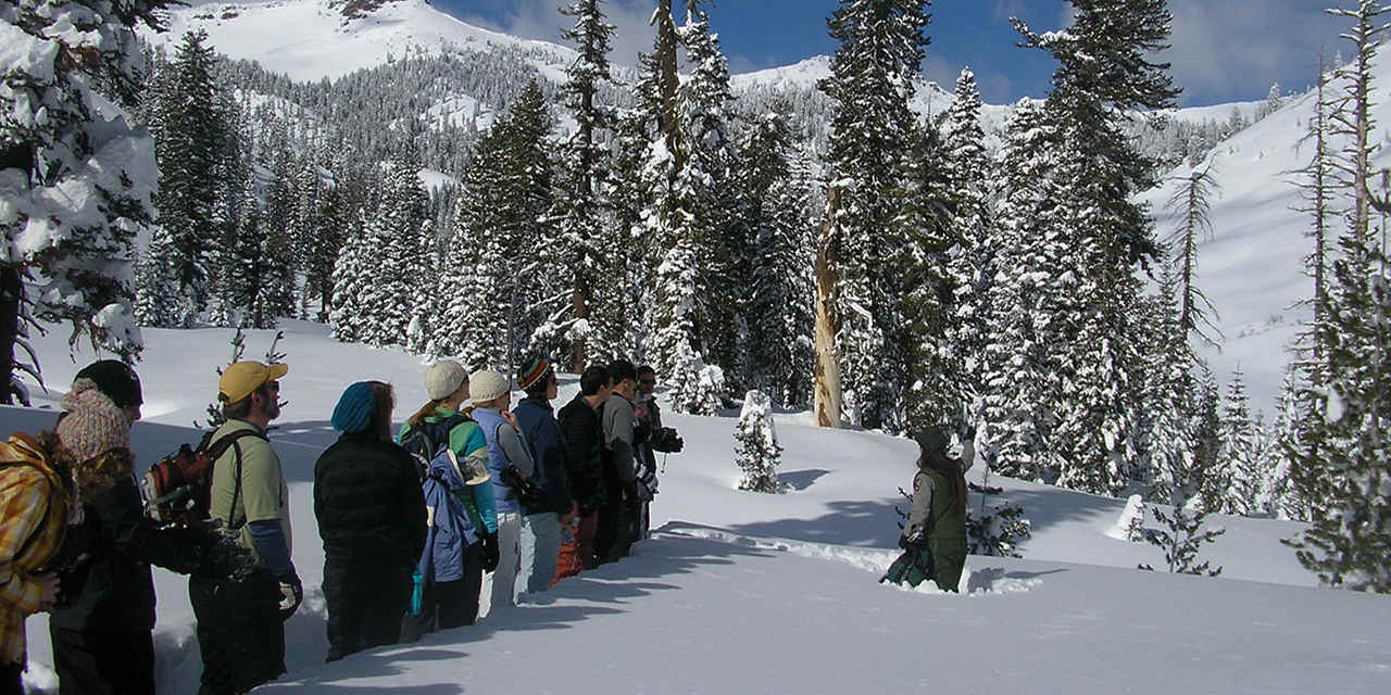 Lassen in Winter
