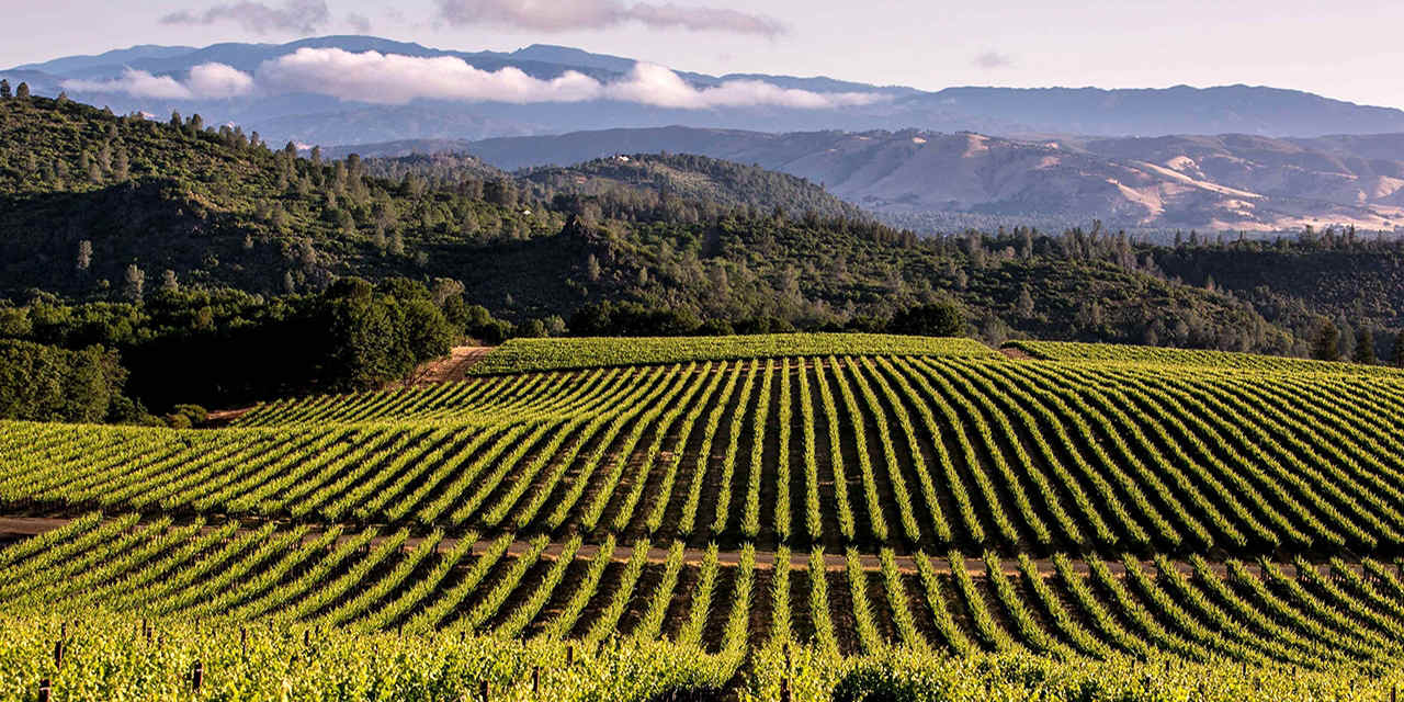 12 Wine Country Destinations