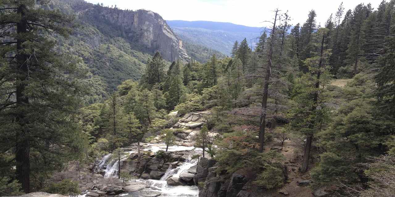 Hetch Hetchy Valley High_Sierra_Trees