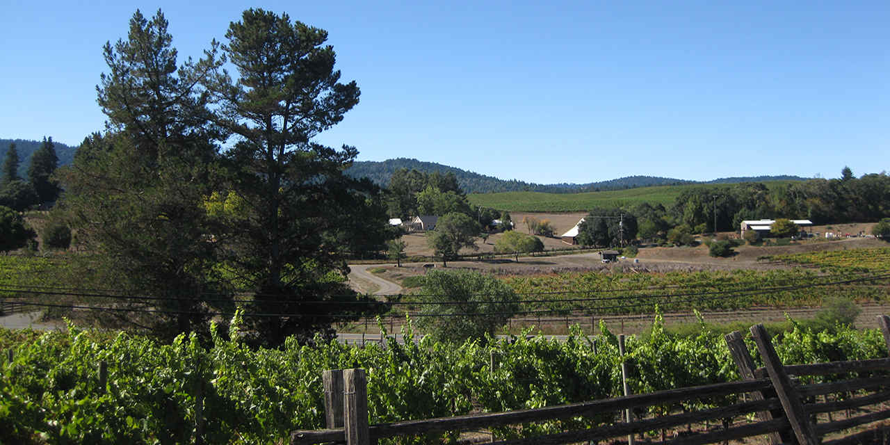 Mendocino Wine Country