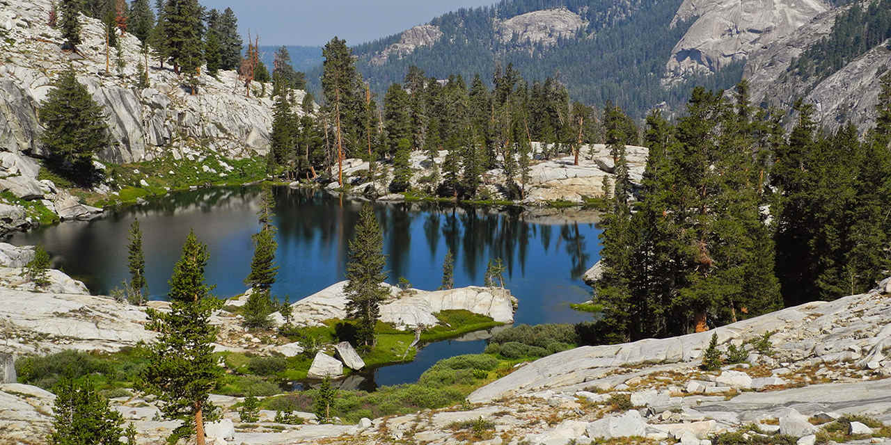 Focus : Sequoia e Kings Canyon National Parks