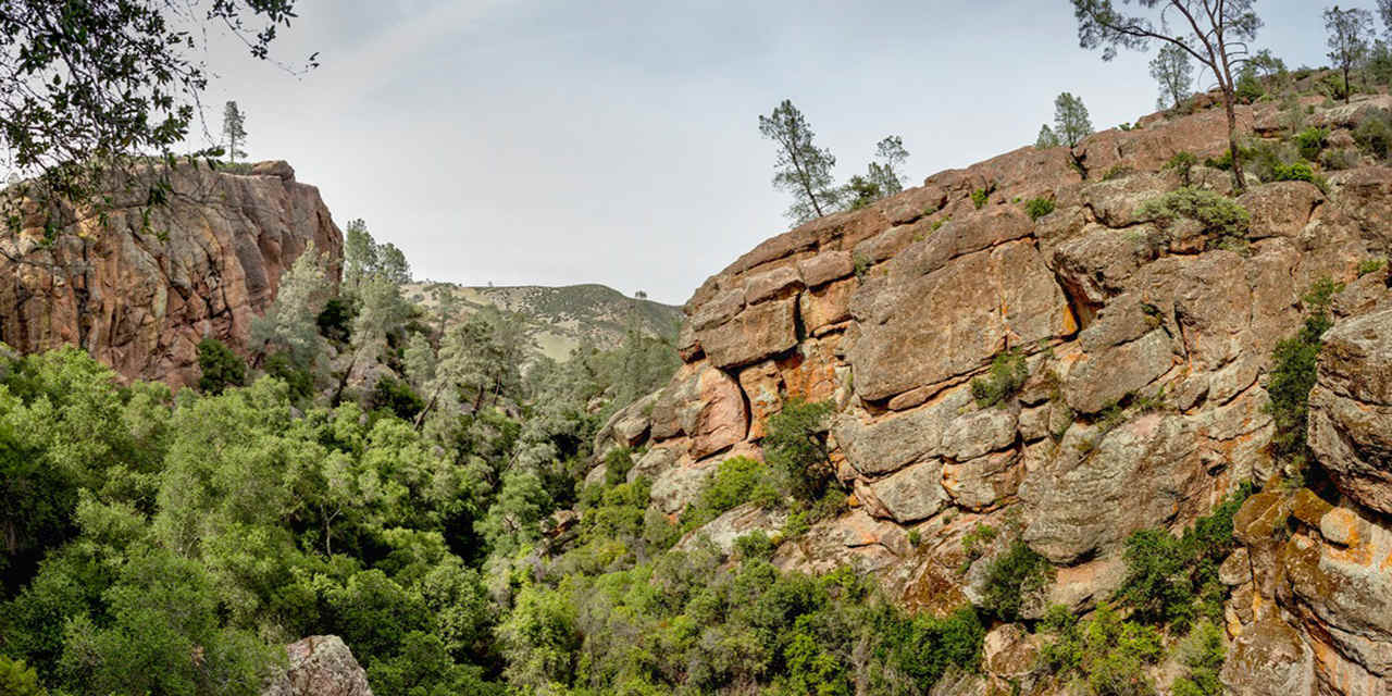 Rock Climbing in Pinnacles